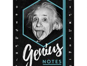 Nostalgic Σημειωματάριο Celebrities Einstein – Genius Notes